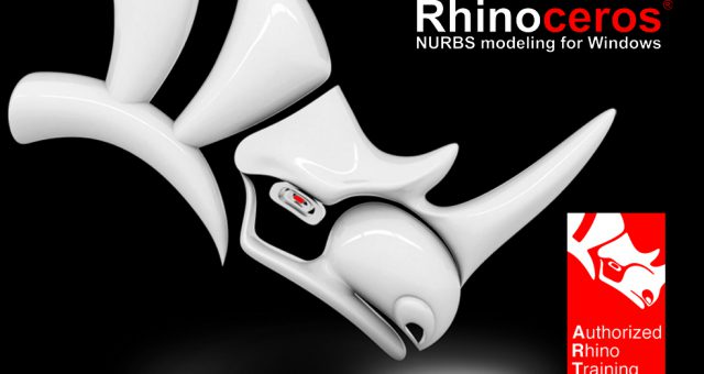 EasyRhino: dalla modellazione 3D con Rhinoceros alla stampa professionale DWS (3 lezione)