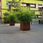 istituto-numen